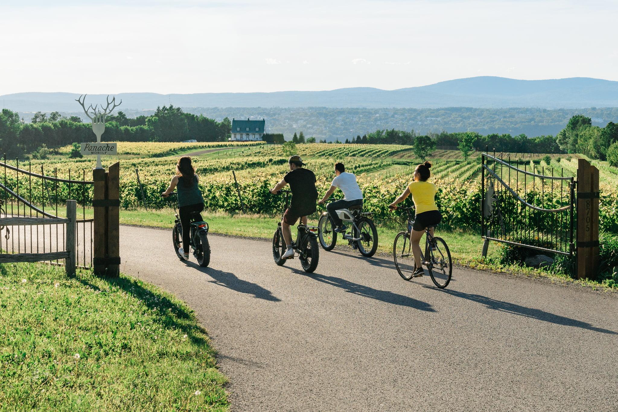 Tour guidé en Vélo électrique